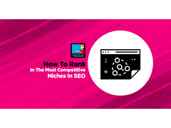 SEO Case Study How To Rank In The Most Competitive Niches In SEO