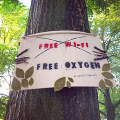A free service brought to you by your neighborhood trees