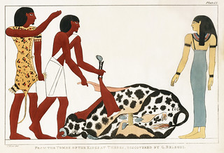 Plate 13 : Sacrifice of the Bull by Giovanni Battista Belzoni (1778-1823) from Plates illustrative of the researches and operations in Egypt and Nubia (1820).
