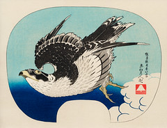 The ukiyo-e illustration, Hawk by Katsushika Hokusai (1849), a portrait of a flying hawk in the sky. Digitally enhanced from our own antique wood block print.
