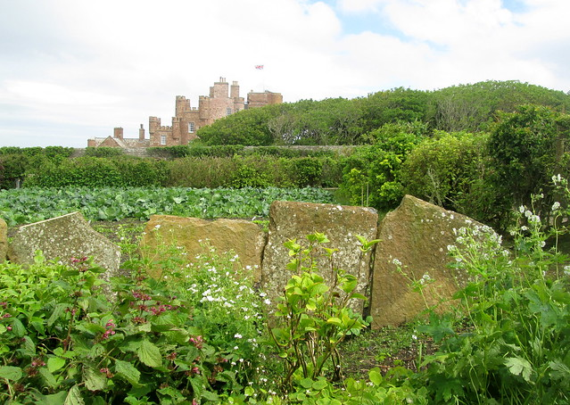 Castle of Mey from Garden