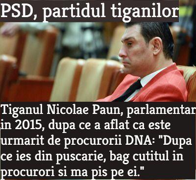 Nicolae Paun