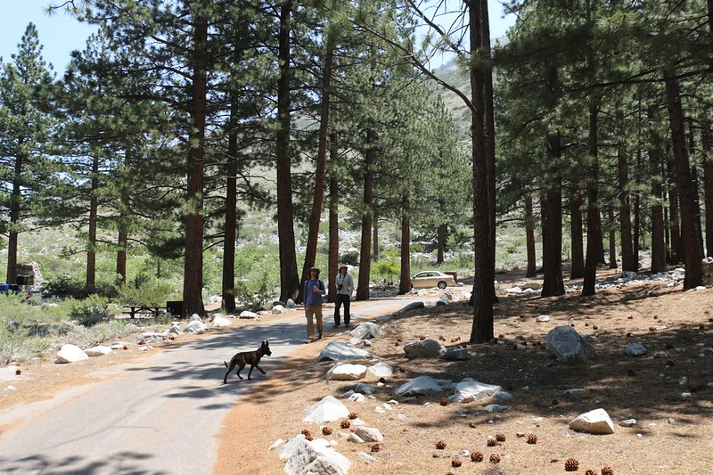 We left the car at our campsite in the Big Pine Creek Campground and took a day-hike to First Falls