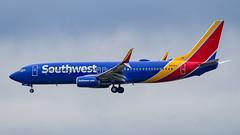 Boeing 737-8H4(WL) N8565Z Southwest Airlines