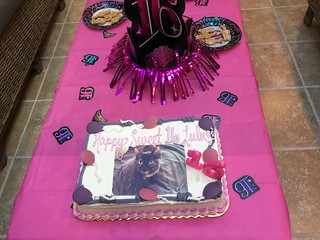 Lulu's Sweet 16 party!