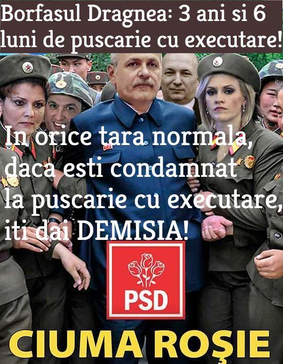 DEMISIA Dragnea, jogodie penala!