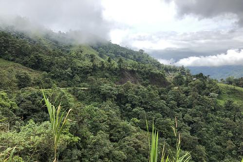 nature naturaleza landscape paisaje paisajem