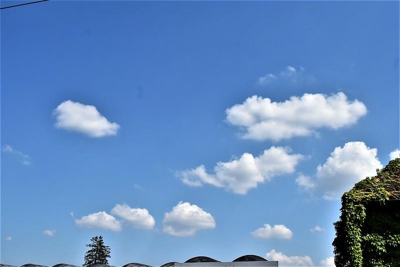 Clouds 08.07 (2)