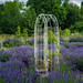 Climbing Frame in Lavender