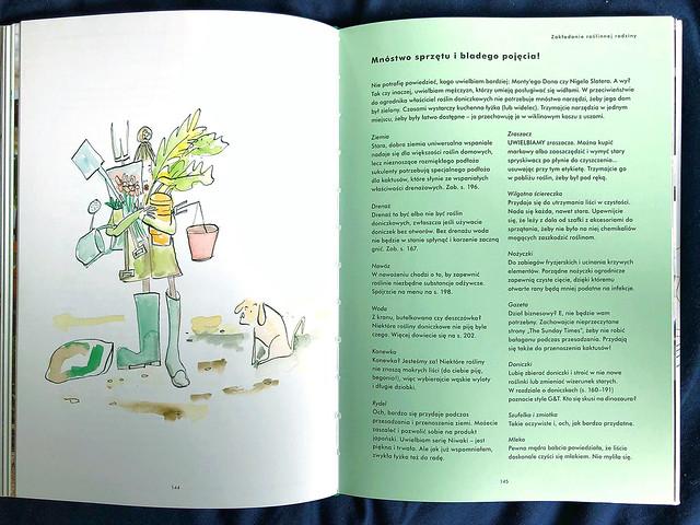 Jak nie zabić swoich roślin