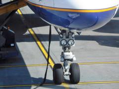 Icelandair 757-200 nose gear