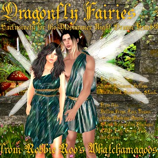 Dragonfly Fairies