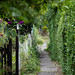 Scotland's Gardens Craigintinney Telferton July 2018 -10