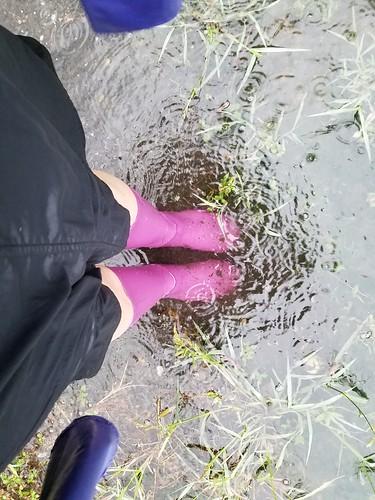 July Monsoon