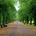 Autumn like Haslam Park in Summer