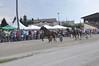 Kasaške dirke v Komendi 08.07.2018 Sedma dirka