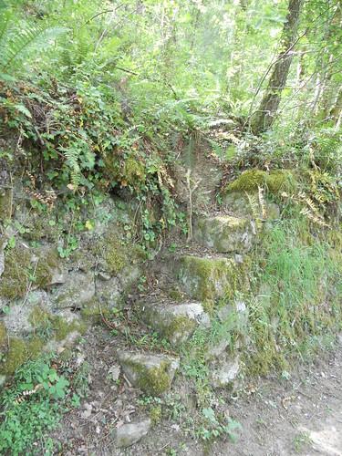 2018-05-12 - Rando à Maclas - Le Plateau de Bessey et le Batalon (17), Escalier de pierres
