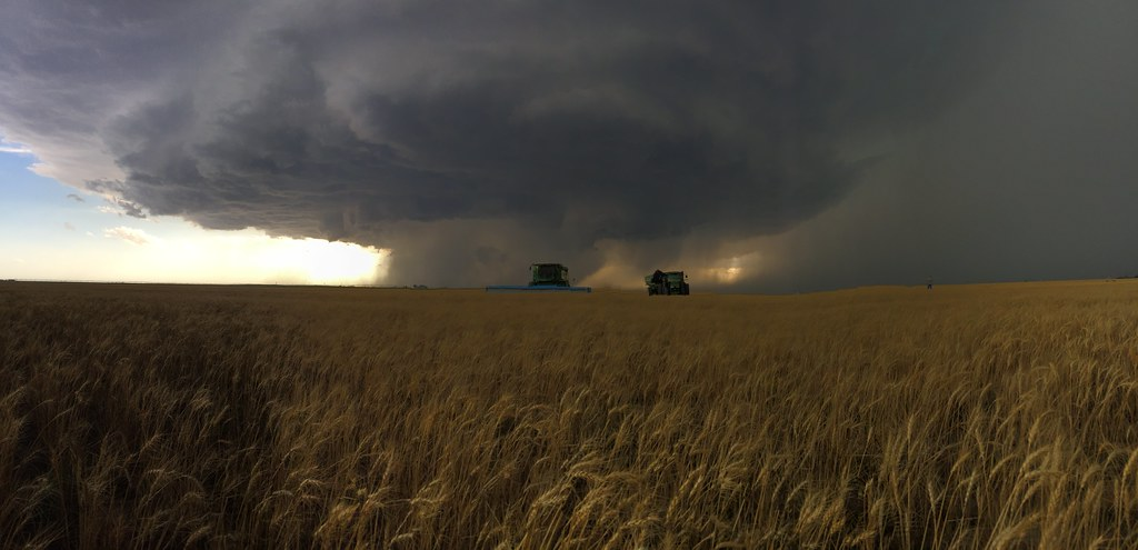 High Plains Harvesting 2018 - TJ