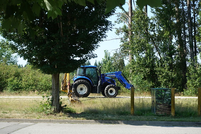 New Holland tractor cutting grass near path