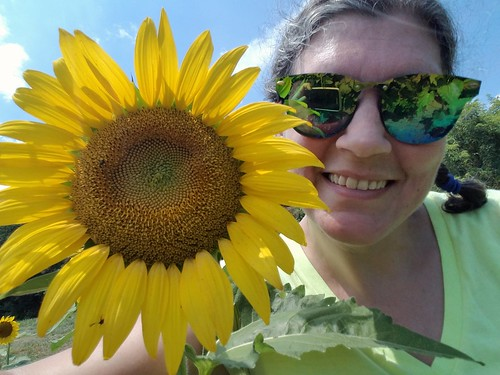 Just a Sunflower and Me
