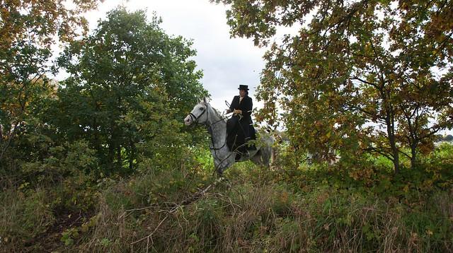Midland Hunt Landhorst 2015-9023