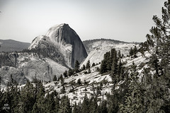 Half Dome seen from Olmstead Point