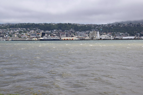 View of Dunedin City,  from The Otago peninsula, South Island, New Zealand.DSC_0948