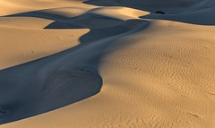 *Sand dunes in light and shadow...a touch of eroticism*