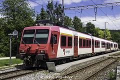 Regionalzug Vallorbe-Le Brassus in Le Pont