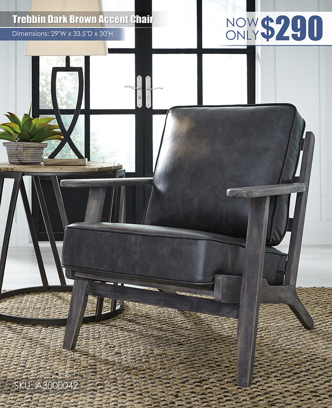 Trebbin Dark Brown Accent Chair_A3000042