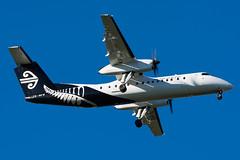 Air Nelson Bombardier Q300
