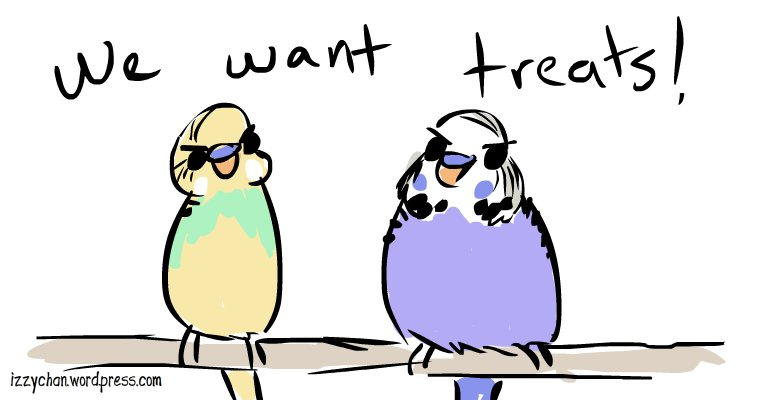 budgies wilson dennis want treats