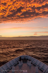 Stunning Early Morning Sky as We Approach Antarctic Sound