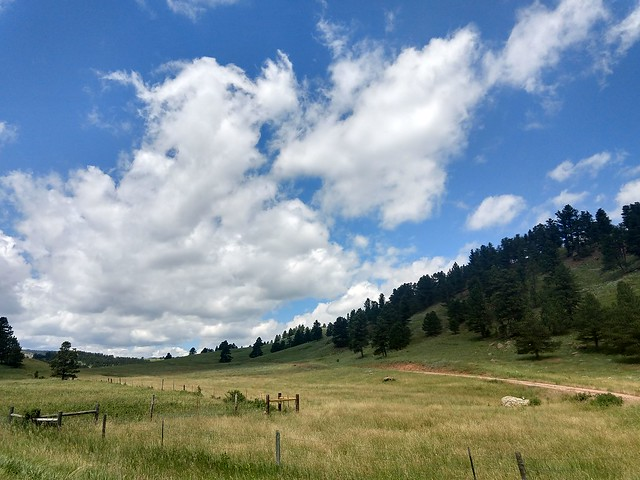 062518 Custer State Park (353)