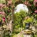 Garden Archway IMG_8450-2