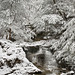 April Snow by Jim Buescher Photography