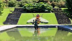 Motivrabatten I Botaniska Trädgården