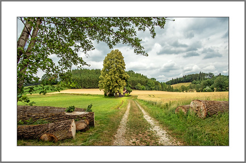 Weg zur Kapelle (Way to the chapel)