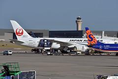 Japan Airlines Boeing 787-8 Dreamliner