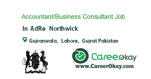 Accountant/Business Consultant