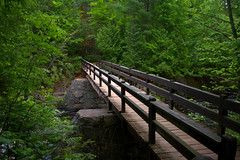 Doughboy Trail, Copper Falls State Park, Wisconsin, June 8, 2018
