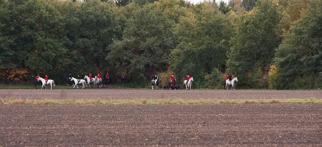 Midland Hunt Landhorst 2015-8976