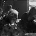 2009.12.28.[17] Zhejiang Wuhang Yuhuang Temple Lunar November 13 Land Festival 浙江 五杭镇十一月十三禹皇庙土主节-79 by 8hai - photography