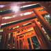 Fushimi Inari-Taisha by Mikedie1