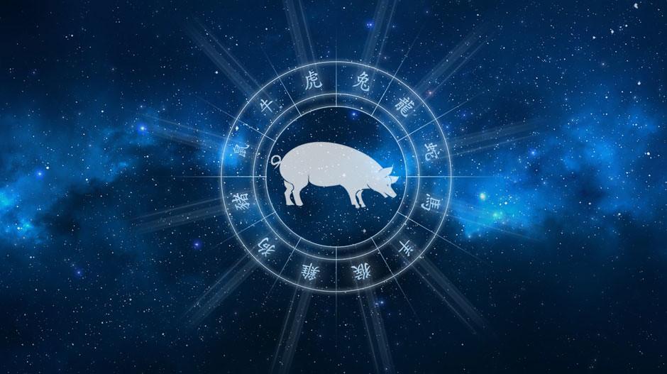 Horoskop chiński Świnia Dzik