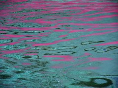 Pink and Green Reflection