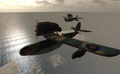 Flying the Hunter S21