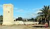 Torres de l'Horta d'Alacant -14