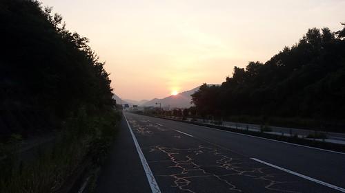 Niho Dawn