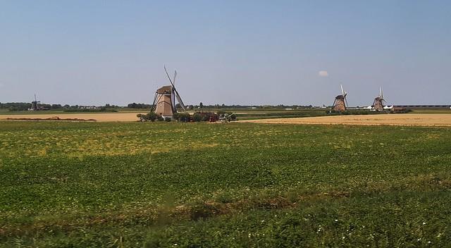 View from the train window, near Gouda